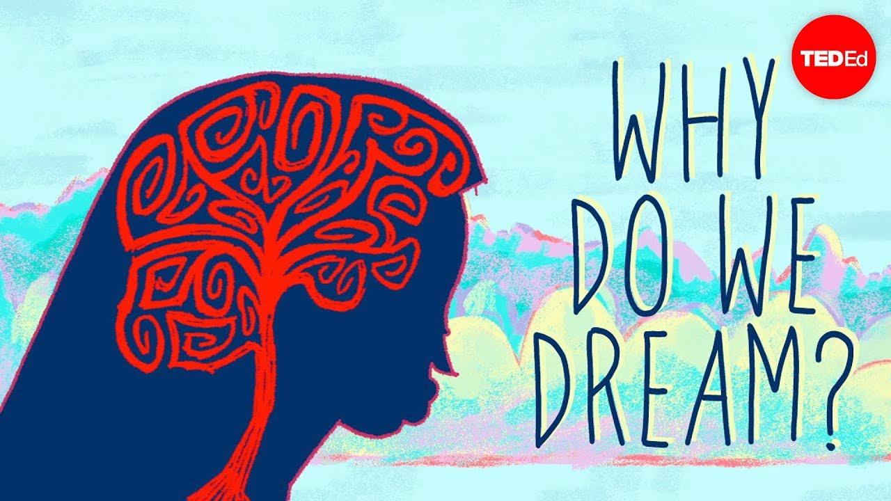 Why do we dream? - Amy Adkins HD quality image