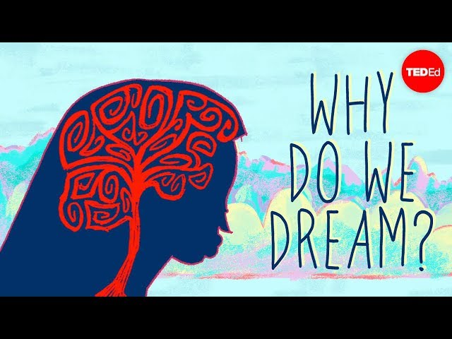 Why do we dream? - Amy Adkins HQ quality image