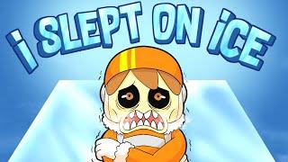 I SLEPT ON ICE MD quality image