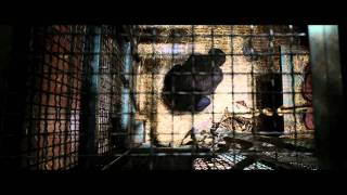 Rise of the Planet of the Apes | Official International Trailer | 2011
