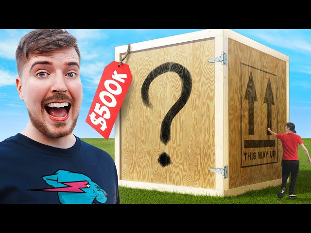 I Bought The World's Largest Mystery Box! ($500,000) HQ quality image