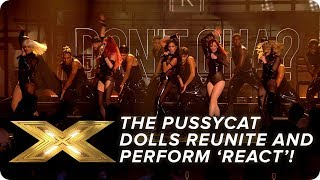 The Pussycat Dolls REUNITE and perform new song 'React'! Final X Factor: Celebrity MD quality image