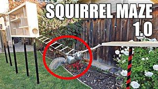 Building the Perfect Squirrel Proof Bird Feeder Screenshot