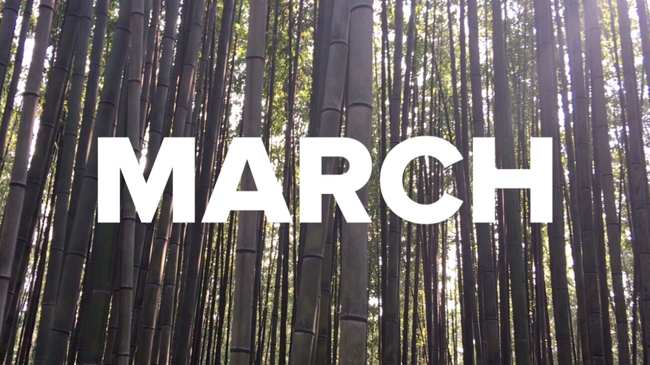 MARCH / ONE SEC EVERYDAY HD quality image